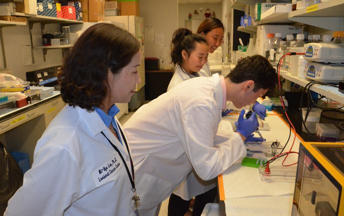Students work in a lab while an instructor looks on