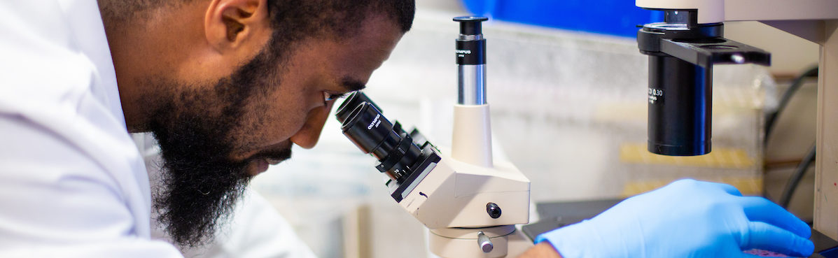 A researcher peers through a microscope