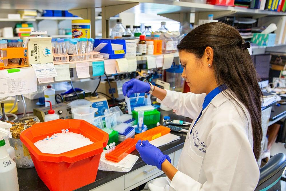 A female researcher works in a lab