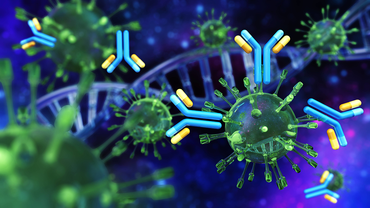 A computer illustration of the SARS CoV-2 virus particles with antibody symbols and DNA double helix