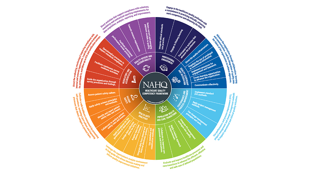 A colorful circle divided into sections illustrates the eight dimensions of the competency framework
